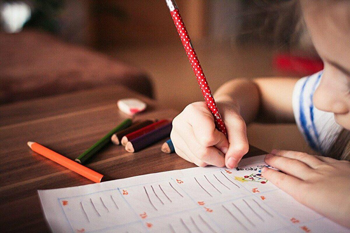 家庭教師のホワイトベアの5つの特徴